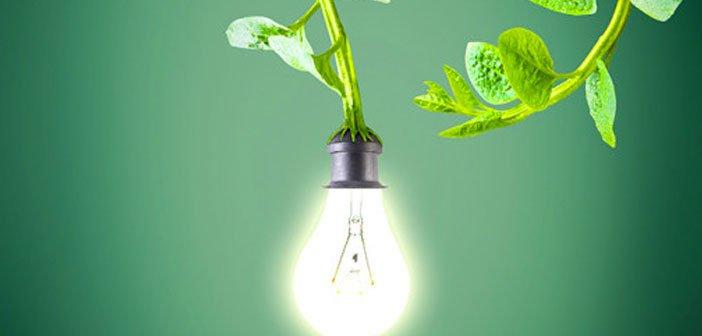 Máster de Energía. El sector eléctrico